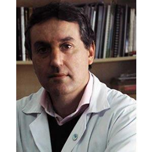 Prof. Miguel Ángel Moreno Pelayo